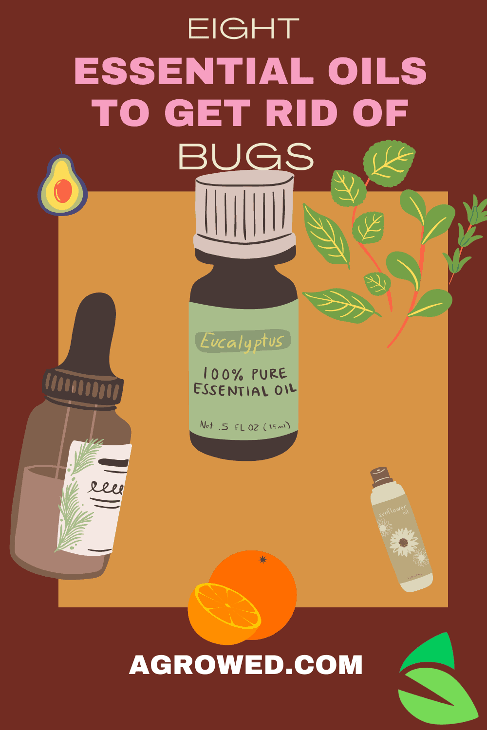 Essential oils to combat pantry bugs