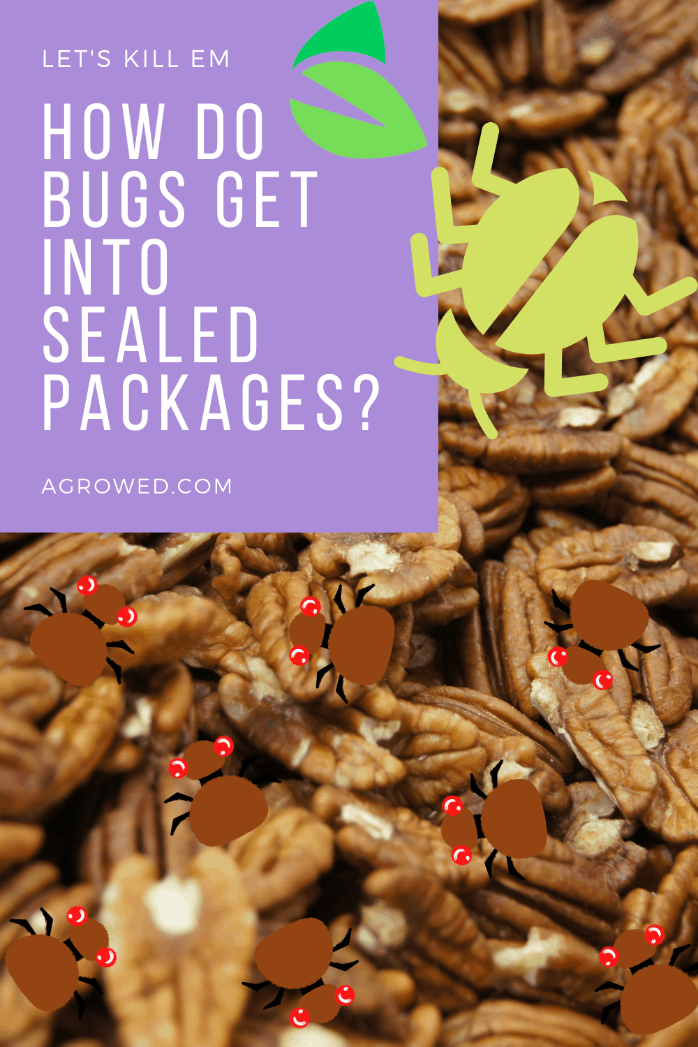 How Do Bugs Get Into Sealed Packages