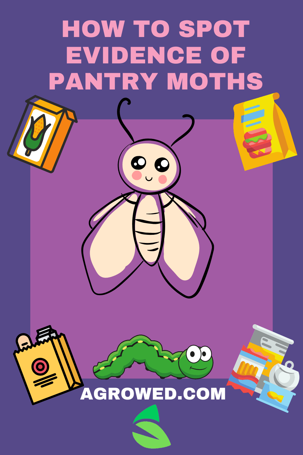 How to Spot Evidence of Pantry Moths 1