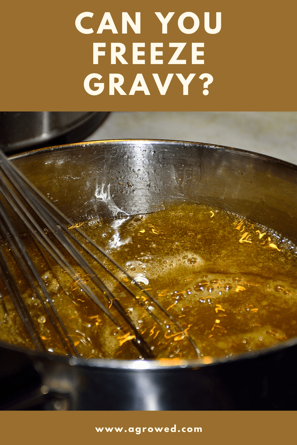 Can You Freeze Gravy
