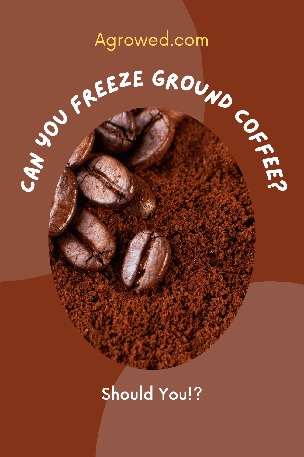 Can You Freeze Ground Coffee